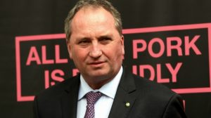 Barnaby Joyce, pic from Sportsbet