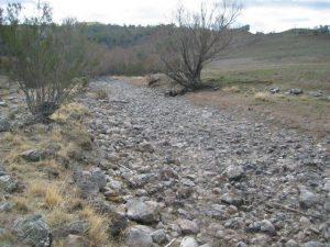 Maclaughlin River 2004