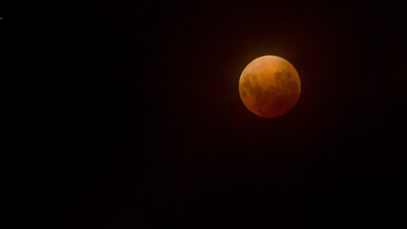 A blood moon rises over Canberra. Photo: Lannon Harley.