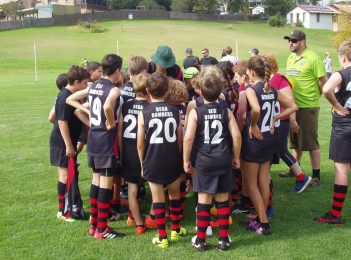 Join the Bega Bombers family this Saturday – kids play FREE
