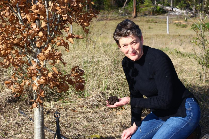 Fiona Kotvojs on her family's farm at Dignams Creek during this season's truffle harvest. Photo: Supplied.