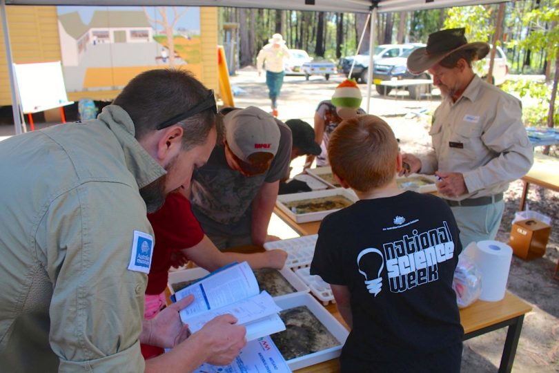 A BioBlitz of the Bega River is one of the highlights of Bega Valley Science Week. Photo: Supplied.