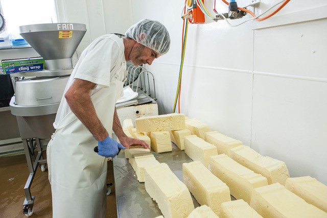 Tilba Real Dairy makes a range of milk, cheese and yogurt products including Feta!. Photo: Supplied.