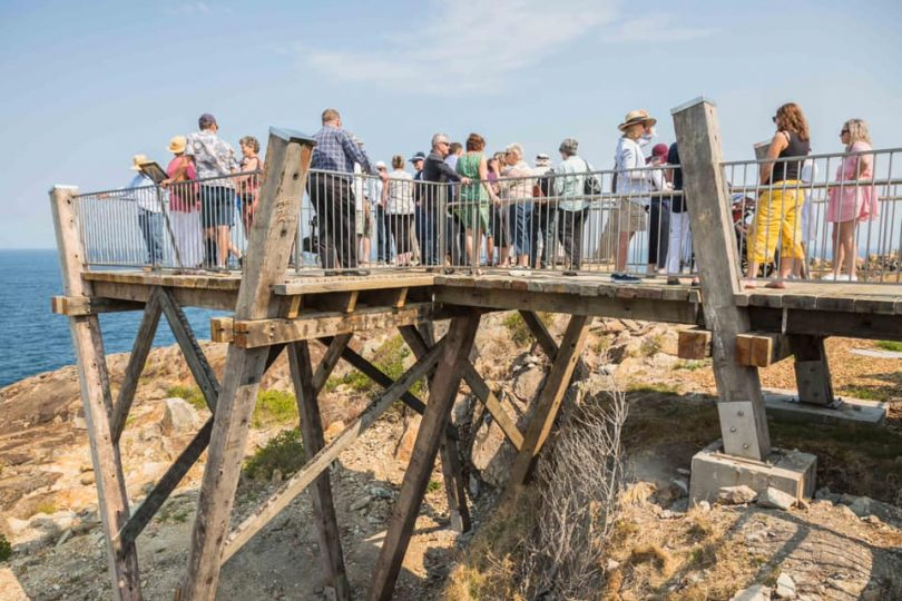 Recycled bridge timbers have been used in the boardwalks and whale watching platform. Photo: David Rogers Photography.