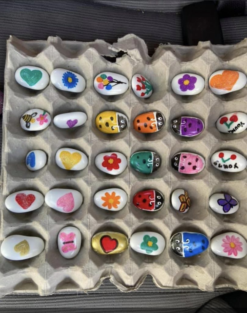 Painted rocks in egg carton.