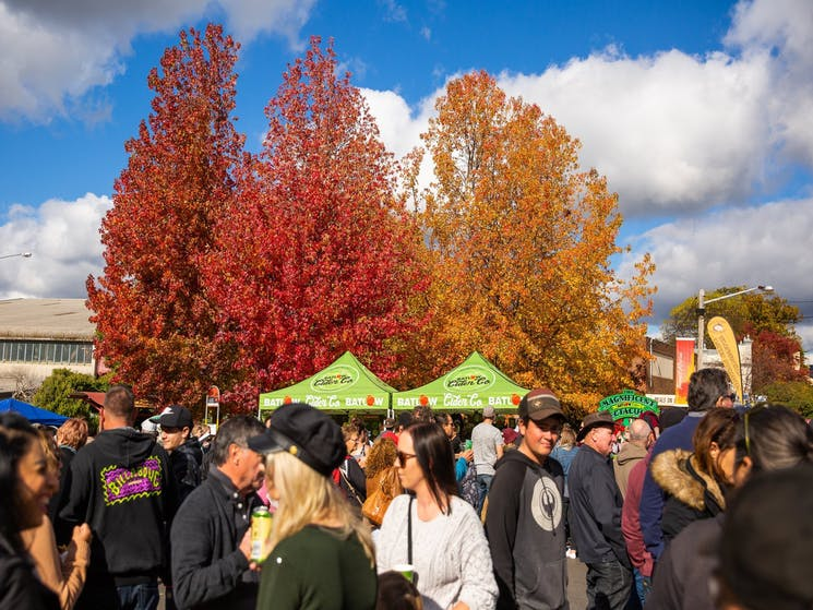 Crowd of people at Batlow CiderFest